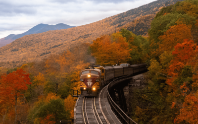 Voyageurs réjouissez-vous : 2021 sera l'année du train