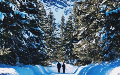 Des alternatives au ski alpin ? Yes we can